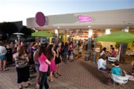 Fast Growing Frozen Yogurt Franchis